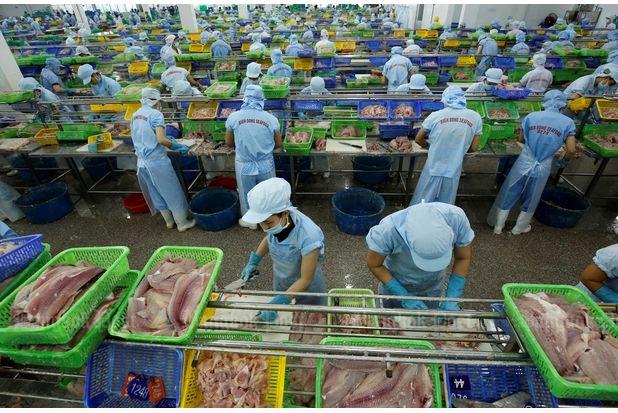 IMF: Tăng trưởng GDP Việt Nam 2020 thuộc nhóm cao nhất thế giới